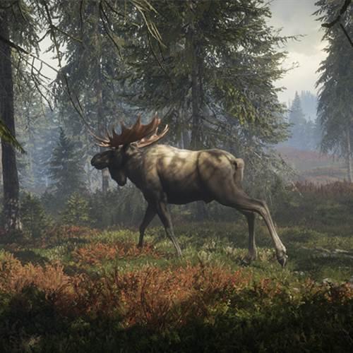 خرید بازی theHunter: Call of the Wild